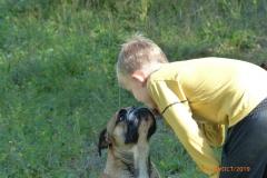 Les Belles Truffes - Bulldog Continental - Femelle - Oxane (sans affixe)