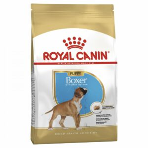 Les Belles Truffes - Bulldog Continental - Boxer - Royal Canin - Puppy Boxer