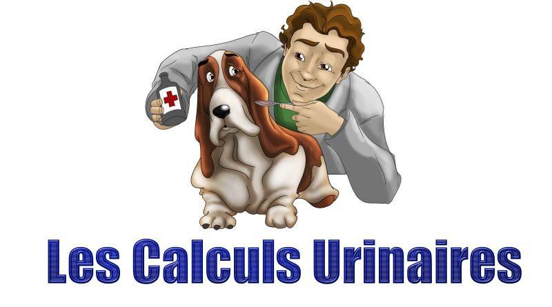Les Belles Truffes - Bulldog Continental - Boxer - Calculs Urinaires