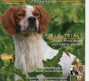 Bulldog Continental l'avis de Raymond Triquet