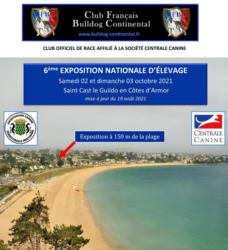 Belles Truffres - Elevage - Bulldog Continental - Nationale d'Elevage 2021